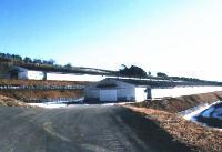 ブロイラーの種鶏場