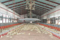 組合員の農場